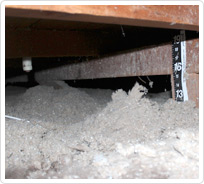 crawlspace before